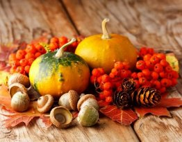 Jesienny kącik